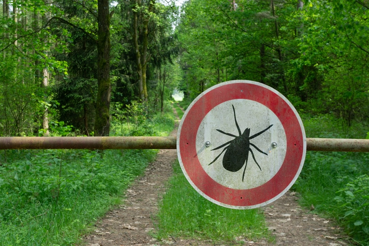 wrongful death can occur from lyme disease